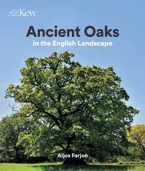 ancient oaks in the landscape kew gardens shop