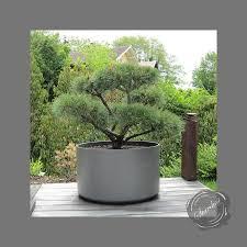 grand big planters perfect ideas exterior designer planters design