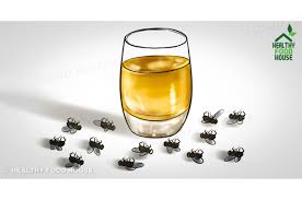 how to get rid of flies quickly inside and outside u2013 health info