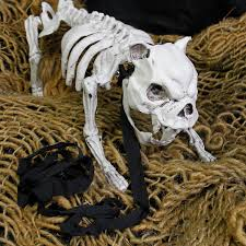 skeleton dog halloween prop amazon com halloween haunters 16