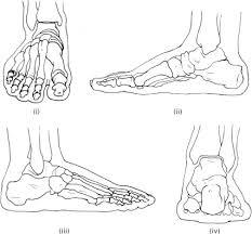 foot sketch templates and footwear design handbook of footwear