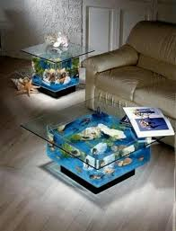 cool fish tanks for the home pinterest fish tanks fish and