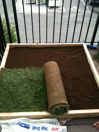 Homemade Garden Box by Super Dog Charlie Pants And Me Dog Potty For Patio Build Your Own