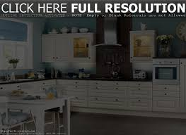 Kitchen Cabinet Color Ideas Kitchen Cabinet Color Ideas Home Design Ideas