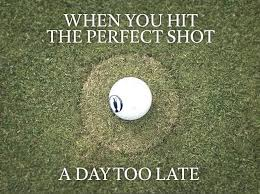 Golf Memes - 535 best funny golf memes images on pinterest golf humor golf