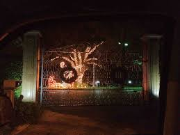 palm tree christmas lights fail cheminee website