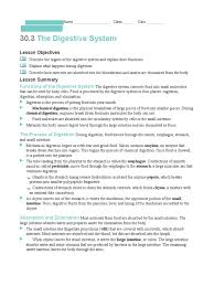digestive system worksheet 1 digestion human digestive system
