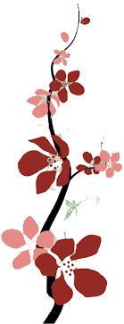 auntie momo designs web graphic design for small business