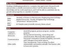 Resume Sample For Volunteer Work by Volunteer Work Resume Samples Resume Cv Cover Letter