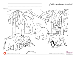 jungle animals 4s printables