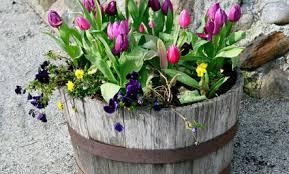 Flower Planter Ideas by Garden Design Garden Design With Hometalk Tower Planter Ideas