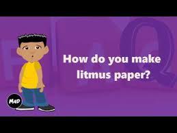 How To Make Litmus Paper At Home - how do you make litmus paper