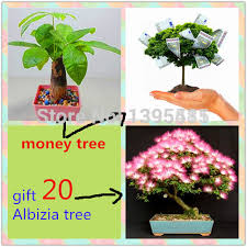 gift tree free shipping gift tree free shipping promotion shop for promotional gift tree