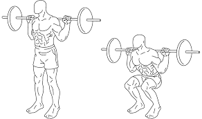 squat exercise wikipedia