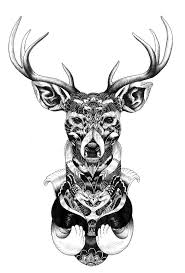 stag head designs 19 best deer images on pinterest deer tattoo drawings and tatoo
