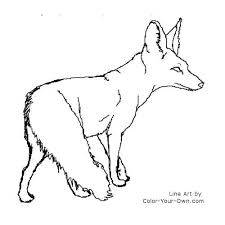 coloring page of a bat bat eared fox coloring page tweet coloring pages blog newest