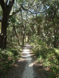 daubenmire trail florida maps 125 photos 28 reviews alltrails