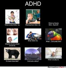 What Society Thinks I Do Meme - adhd what people think i do what i really do perception vs