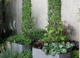 modern small garden design ideas nurani org