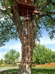 cool tree houses tree house ladder ideas