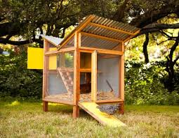 easy to build backyard chicken coop chicken coop design ideas