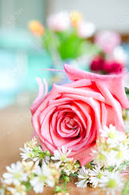 bouquet de fleurs roses blanches bouquet de roses et petites fleurs blanches pétales fond banque