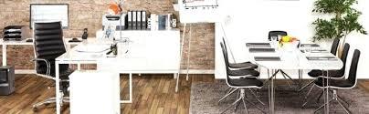 d orer un bureau professionnel beautiful idees deco bureau contemporary amazing house design