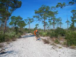 Ocean Lakes Map Ocean To Lake Trail The Florida Trail