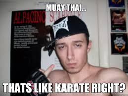 Muay Thai Memes - muay thai thats like karate right mma poser phil quickmeme