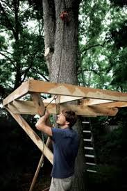 How To Build A Backyard How To Build A Treehouse In The Backyard Tree House Plans