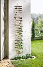 760 best garden images on pinterest garden ideas garden plants