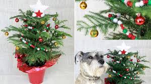 festivity 25 easy diy decorating ideas