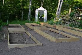 making beds vegetable garden beds that is