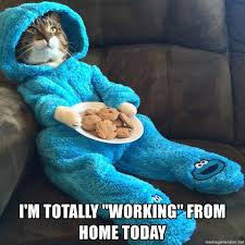 Working From Home Meme - i m totally working from home today cat in pjs meme generator