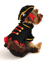 anit accessories buccaneer pirate dog costume 8 inch