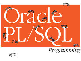 pl sql interview questions and answers for graduates part 1