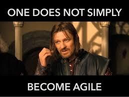 Agile Meme - are you doing water scrum fall