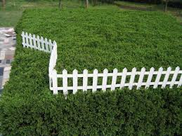 Decorative Outdoor Fencing Cheap Design For Garden Fence Ideas Http Www Lookforgoods Net