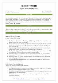 professional marketing resume marketing resume summary megakravmaga