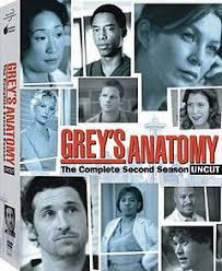 Seeking Season 1 Wiki Grey S Anatomy Season 2