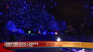 denver zoo lights open through jan 1 fox31 denver