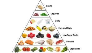 of balance diet in our daily routine of food