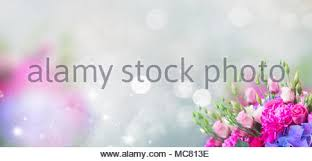 imagenes con flores azules dia de la maestra tarjeta para el día del maestro y flores foto imagen de stock