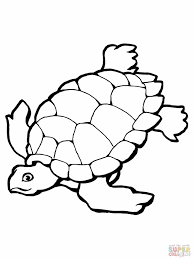 sea turtle clipart coloring page pencil and in color sea turtle