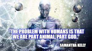 Spiritual Memes - the problem with humans is imgflip