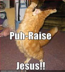 Jesus Cat Meme - puh raise jesus cheezburger funny memes funny pictures
