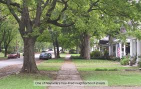 knoxville tree master plan