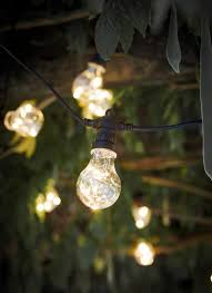 Hanging Tree Lights by Festoon Lights 20 Bulbs Garden Trading