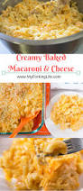 Best Side Dishes For Thanksgiving Creamy Baked Macaroni And Cheese Perfect Side Dish For