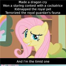 Funny Pony Memes - memes my little pony 28 images my little pony meme week may 3rd